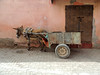 Waiting in the shadow (Shahrazad26) Tags: marrakech marokko maroc morocco ezel donkey esel âne shadow schaduw schatten ombre ombra