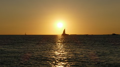 Mallory Square Sunset (renedrivers) Tags: mallorysquaresunset keywestflorida florida renedrivers rchan415