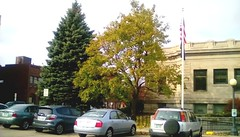 Trees at Spies Public Library - TMT (Maenette1) Tags: spiespubliclibrary trees evergreen deciduous autumn cars building flag menominee uppermichigan tremendoustuesday flicker365 michiganfavorites
