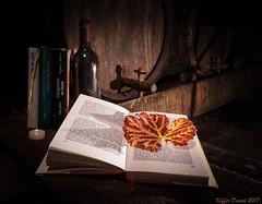 DK_SC05921-1 (Daniel KIFFER) Tags: cave vin