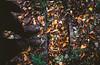 IMG_7987-2 (Tsikura) Tags: autumn autumncolours sakartvelo nature canon landscape yellow orrange orange colours vine wine georgia კარალიოკი ჩირი 50mm