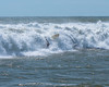 DSC_0526 (capt_tain Tom) Tags: surf surfing stormsurf hurricanesurf wipeout waves gulfofmexico padreisland