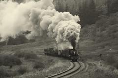 44806 (feroequineologist) Tags: 44806 black5 lms nymr railway train northyorkshiremoorsrailway steam