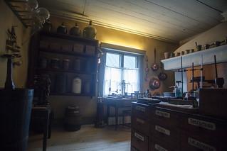 older lab