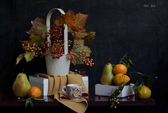 Autumn  Days (Esther Spektor - Thanks for 12+millions views..) Tags: stilllife naturemorte bodegon naturezamorta stilleben naturamorta creativephotography artisticphoto composition art autumn tabletop bouquet leaves berry food fruit pear tangerine basket box cup cloth pattern white green rust orange yellow brown black estherspektor canon