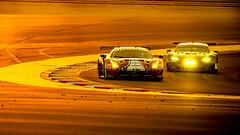 #51, Ferrari 488 GTE, (Mounters Photography) Tags: 51 18112017 afcorse alessandropierguidi ferrari488gte wecbapco6hoursofbahrain drivenbyjamescalado bahraininternationalcircuit bahrain bhr