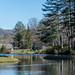 Pond in Cashiers North Carolina