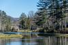 Pond in Cashiers North Carolina (JavaJoba) Tags: casheriers jackkennard nikon pond southcarolina water geese nikond5200 travel travellocal trees usa us