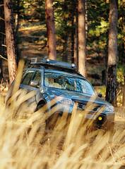 2012 Subaru Forester (donaldgruener) Tags: sh forester subaru forest offroad