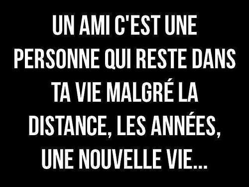 Citation D Amitie A Distance Amis Https Citations Tn