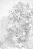 white out (sami kuosmanen) Tags: suomi syksy autumn tree talvi kuusankoski kouvola nature north europe exposure expression luonto light landscape photography puu finland forest sky snow winter white lumi bokeh dof