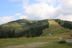 IMG_0686 (tecumseh1967) Tags: 2016 borsa nationalpark rodnagebirge rotel rumänien wanderung wasserfall wasserfallderpferde rollendehotel