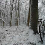 Ride in the snow. thumbnail