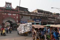 india_733 (Diferdin) Tags: india rajasthan solo traveling agra new delhi taj mahal