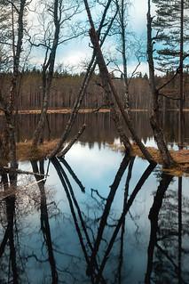 Gate to Seitseminen national park / Portti Seitsemiseen