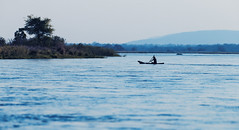 Paddling In The Blues (AnyMotion) Tags: boat boot man mann fisherman fischer river fluss landscape landschaft 2014 anymotion lowerzambezinationalpark zambia sambia africa afrika travel reisen nature natur wildlife 6d canoneos6d landschaftsaufnahmen colours colors farben blue blau