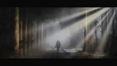 My Heroine (der_peste) Tags: woman women forest raysoflight godrays raysofgod sunrays sunbeams woodland dark haunted moody mood atmosphere lurky mist fog foggy misty heroine