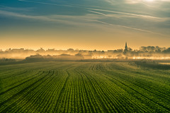 Sisak, Croatia (BambaataaRR) Tags: green sisak croatia landscape morning sun day hometown lines field