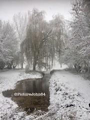 First snow in Holland (PictureJohn64) Tags: tree boom picturejohn64 netherlands nederland flevoland almere iphone landschap landscape snow sneeuw koud cold winter