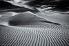 Dunescape (Mimi Ditchie) Tags: oceano oceanodunes dunes sanddunes monochrome blackandwhite sand sanluisobispocounty dune sandpatterns oceanodunessvra getty gettyimages mimiditchie mimiditchiephotography