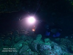 Underwater Cavern (YellowSingle 单黄) Tags: belharra cavern underwater scuba diving marine cave atlantic socoa olympus tg4 foctec