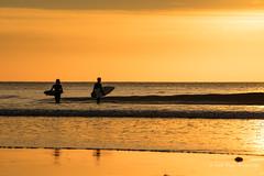 San Diego Life 5 (Will.Mak) Tags: sandiegolife surfing surf surfer waves surfboard surfphotography surfinglife surflife ocean swell surfers surftrip bodyboarding surfsup sup beachlife sandiego sd lajolla sandiegoliving mysdphoto sandiegoca pacificbeach delmar cali allthingssd surflicious fe100400mmf4556gmoss sonyilce7rm3 sony ilce7rm3 a7riii wave