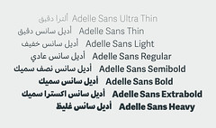 Adelle Sans Arabic (TypeTogether) Tags: adellesansarabic adellesans azzaalameddine typetogether wwwtypetogethercom arabic arabiclatin multiscript newrelease