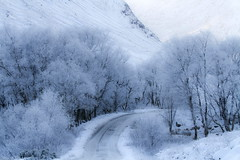 Ice Road (PeterYoung1.) Tags: atmospheric beautiful cold glencoe highlands glenetive landscape nature snow scenic scotland scottish scene trees uk peteryoung1 winter ice frost