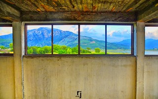 The Panoramic Window