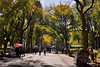 The Poet's Walk (Eddie C3) Tags: newyorkcity nycparks centralpark poetswalk nyc autumncolor autumn parks