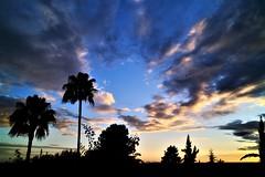 Entre nubes (ameliapardo) Tags: cielo atardecer azul nubes palmeras contraluz naturaleza airelibre sevilla andalucia españa fujixt1