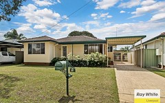 59 Alderson Avenue, Liverpool NSW