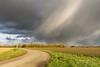 Falling (Ellen van den Doel) Tags: natuur netherlands nature overflakkee nederland weer weather clouds goeree november 2017 road landschap regen weg sky rain landscape lucht sommelsdijk zuidholland nl