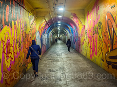 191st Street IRT Subway Tunnel Beautification Project, Washington Heights, New York City (jag9889) Tags: washingtonheights usa manhattan tunnel people broadway newyork irt subway uppermanhattan 191ststreet 20171115 2017 road text jag9889 subwayart newyorkcity mural publicart mta wall mtaartsfortransit indoor graffiti art artist crossing highdynamicrange metropolitantransportationauthority ny nyc painting streetart tagging unitedstates unitedstatesofamerica wahi us