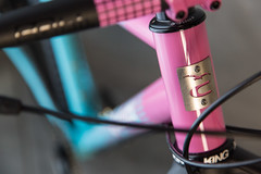 0058untitled-9107.jpg (peterthomsen) Tags: caletticycles coveypotter mtb