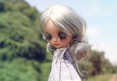 Stella Serendipitous (k07doll) Tags: blythe blythecustom blythedoll bigeyes customblythe custom cubby cute sweet doll k07 k07doll