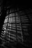 20171103 Mino 8 (BONGURI) Tags: 美濃市 岐阜県 日本 jp latticewindow latticeshadow shadow lattice 格子戸 格子 影 陰 light 明かり night dark 夜 bw monochrome 白黒 モノクロ モノクローム udatsuroofingstreet うだつの上がる町並み mino 美濃 gifu 岐阜 nikon d3s afsnikkor50mmf18gspecialedition