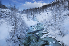 Winter stream - D8G_1674 (Viggo Johansen) Tags: winter stream cold sky clouds landscape november trees vestagder norway