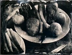 Collodion humide nature mortre 2 - ambrotype, collodion, collodion humide, humide, scann.jpg (Meditant) Tags: collodion scann ambrotype humide collodionhumide