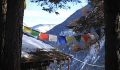 sur Frête (bulbocode909) Tags: valais suisse montchemin surfrête montagnes nature automne neige drapeaux troncs arbres rouge jaune vert bleu toits chalets
