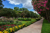 Wonderful Walkway (slange789) Tags: bayloruniversity waco texas