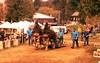 Sheffield Draft Horse Pulls (rentavet) Tags: analog sheffieldjohnnyappleseedfestival velvia100f 200asa drafthorses nikkormatel nikkor105mm xpro