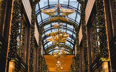 Christmas Lights I (janmalteb) Tags: bremen deutschland germany lights lichter christmas weihnachten passage mall sterne stars gebäude building architektur architecture urban canon eos 1000d
