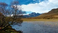 a place (Edinburgh Nette ...) Tags: landscapes skye october17 torrin reeds sky freshwater lochs mountains black cuillin