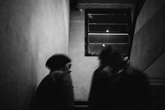onwards & upwards into the night (Albion Harrison-Naish) Tags: newtown sydney newsouthwales australia sydneystreetphotography albionharrisonnaish olympus olympusem5 lumixg20f17ii em5