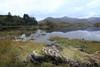 Stone cold... (Indianajules travels) Tags: connemara ireland