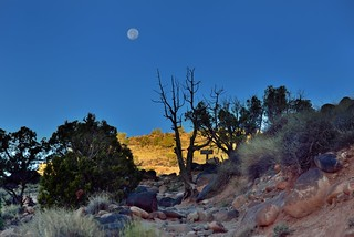 The Moon Just Over the Rise... (Capitol Reef National Park)