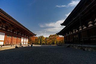 To-ji Temple,Kyoto,Japan