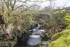 Thorns Gill Packhorse Bridge, Gearstones (Kingsley_Allison) Tags: thornsgill gearstones ribbleheadviaduct route yorkshire yorkshiredales packhorse packhorsebridge pannier gill water d7200 nikon northyorkshire