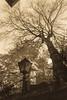 EPMG Mono-Sepia November 2017-3 (Philip Gillespie) Tags: epmg edinburgh photography meetup group scotland mono monochrome black white blackandwhite bw canon 5dsr editing lightroom old age ancient town city 2017 november sky clouds windows tree bush grass arch close street lamp statue